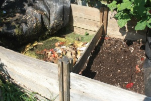 Why Start a Compost?